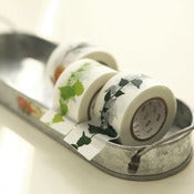 Image of mTape Garden Vine Washi Tape