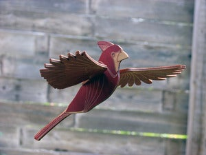 Image of JCR BIRDS : CARDINAL