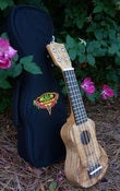 Image of Kala Solid Spruce/Flame Maple Pocket Uke Bstock