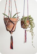 Image of Macrame Plant Hangers