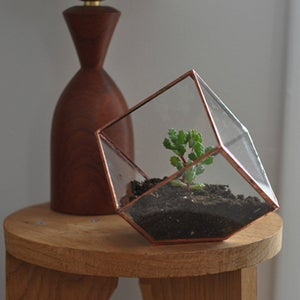 Image of Earth Terrarium Kit, small