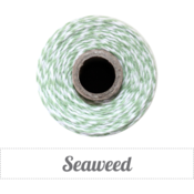 Image of Seaweed - Mint Green &amp; White Baker's Twine 
