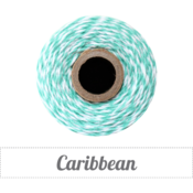Image of Caribbean - Teal &amp; White Baker's Twine