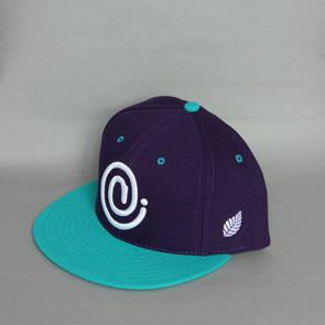 Image of C Symbol Snapback Purple/Aqua