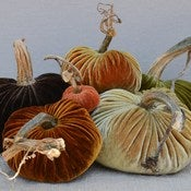 Image of Velvet Plush Pumpkin Inspired Large Set