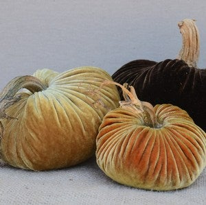 Image of Velvet Plush Pumpkin Inspired Trio