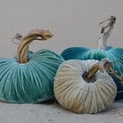 Image of Velvet Plush Pumpkin Turquoise Trio Set