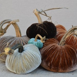 Image of Velvet Plush Pumpkin Sensational Large Set