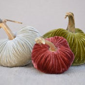 Image of Velvet Plush Pumpkin LoveFeast Trio