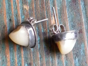 Image of PREMOLAR earrings