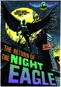 Image of Night Eagle Poster