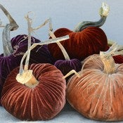 Image of Velvet Plush Pumpkin Fall Jewels Large Set