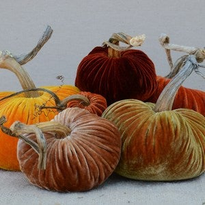 Image of Velvet Plush Pumpkin Fall Sunset Large Set