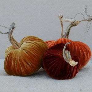 Image of Velvet Plush Pumpkin Fall Sunset Trio