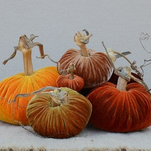 Image of Velvet Plush Pumpkin Harvest Large Set