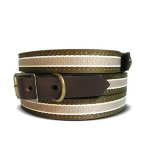 Image of Old School Stripe 106 Collar