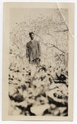Image of MAN IN A TREE VINTAGE SNAPSHOT PHOTO