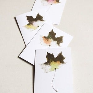 Image of Watercoloured Maple Cards