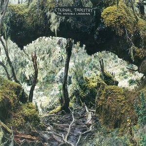 Image of Eternal Tapestry - Invisible Landscape LP