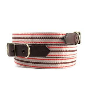 Image of Old School Stripe 104 Collar