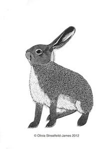 Image of Sandy-Leveret - Limited Edition Linocut print