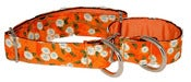 Image of Adeline Cherry Blossom - Martingale Collar