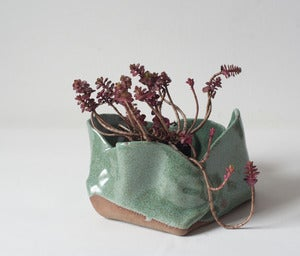Image of Green Speckled Free-form Folded Planters