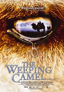 Image of The Story of the Weeping Camel