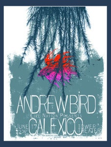 Image of Andrew Bird/Calexico Gig Poster by Punchgut