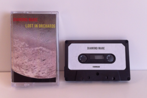 Image of Diamond Mare - Lost In Orchards