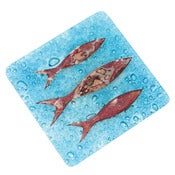 Image of Cornish Pilchard Coasters