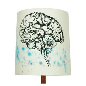 Image of Anatomy Lamp Shade - Brain, Painted