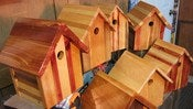 Image of OWS Birdhouse