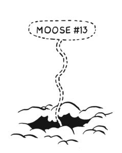 Image of Moose #13