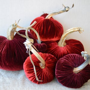 Image of Velvet Plush Pumpkin Holiday Reds Large Set