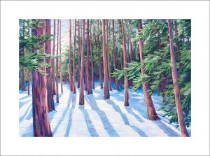 Image of Winter Pines, Prismatic, limited edition print
