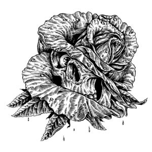 Image of Skull Rose Original line art.