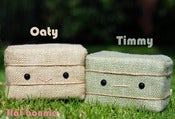 Image of Flat Bonnie's BFFs Oaty & Timmy - Hay Bales Plush Set - Handmade