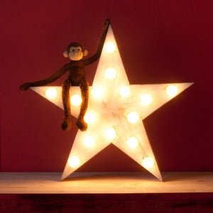 Image of LENA star lamp