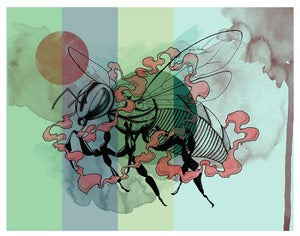 "Image of ""untitled"" hornet giclee print"