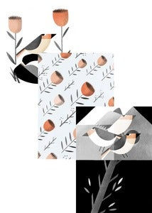 Image of Birds Card Set