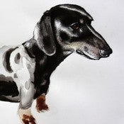 Image of Sausage Dog 18 x 8 print