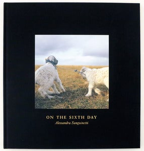 Image of On the Sixth Day by Alessandra Sanguinetti(Signed)