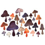 Image of Mushrooms - print