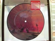 "Image of the Flaming Lips ~ Do You Realize?? 7""  pciture disc"