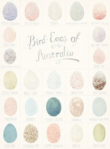 Image of BIRD EGGS OF AUSTRALIA
