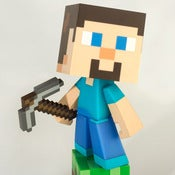 Image of MAD x MINECRAFT STEVE? Vinyl.