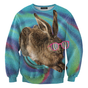 Image of Crazy rabbit sweater