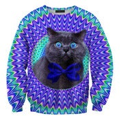 Image of Crazy cat sweater