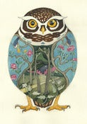 Image of Little Owl - Card